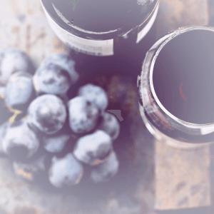 Sulphur Free Wines