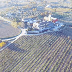 Azienda Agricola Chiusa Grande